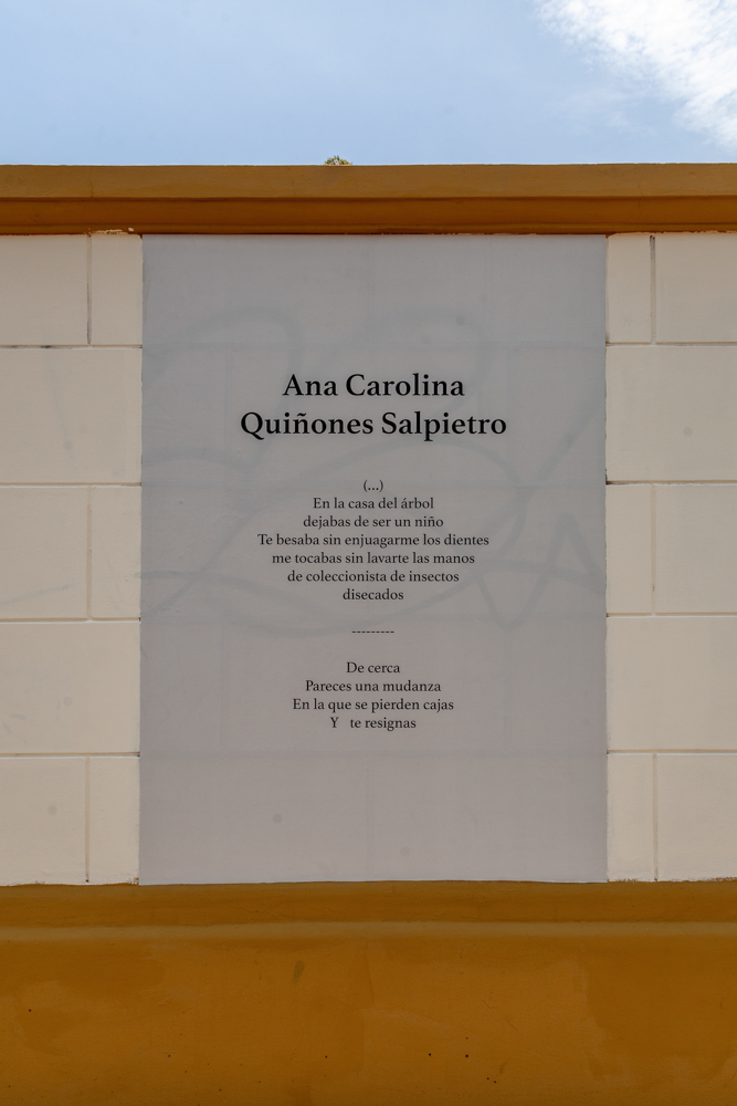 Ana Carolina Quiñonez Salpietro