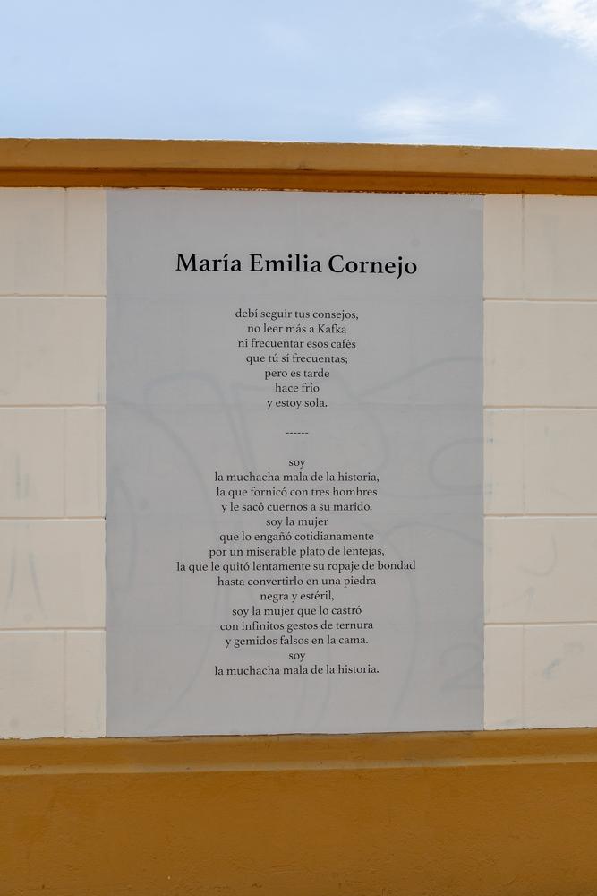 María Emilia Cornejo